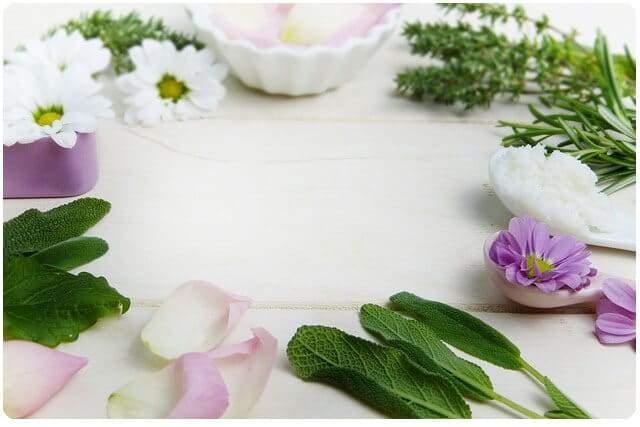 Comprar cosmética ecológica